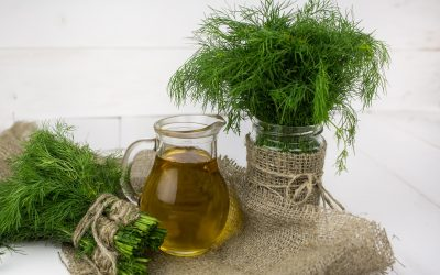 The Vegetable oils, uses and its benefits