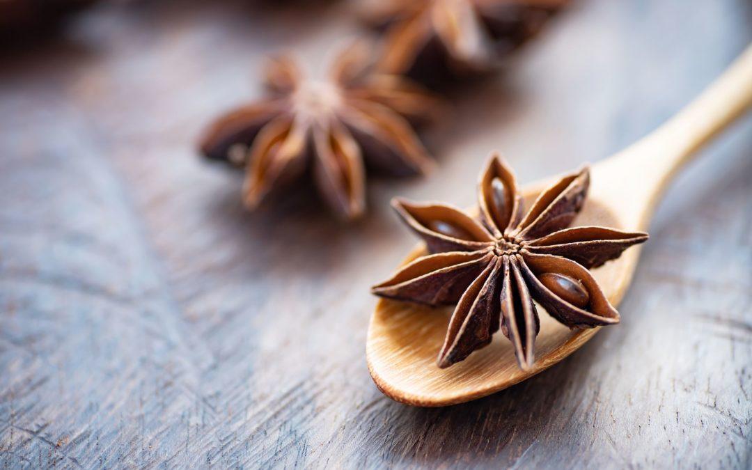 Huile essentielle d'anis pour les détaillants et les praticiens d'aromathérapie