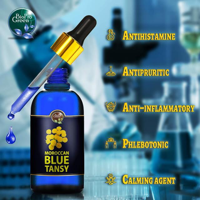 moroccan-blue-tansy-essential-oil